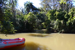 Iguazu (côté argentin)