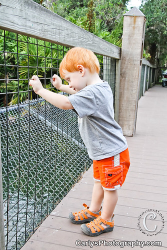 boo at the zoo (4 of 10).jpg