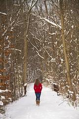 CCM Nature Trail photo by Matt Champlin
