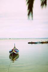 June photo by Bruno Fazenda