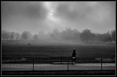 Misty Park Life photo by J-o-h-n---E