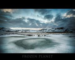 Frozen Planet photo by Pétur Gunn Photograpphy