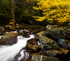 Big Creek photo by pvarney3