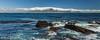 304 - Afrique du Sud - Octobre 2016 - Cape Town vue de Robben Island - IMG_3178