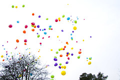 Loony Balloons photo by Viking-
