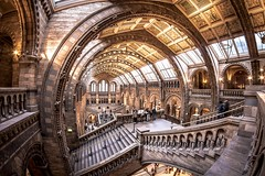Inside the Natural History Museum photo by Sekanoº