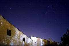 Orión photo by Gallo Quirico