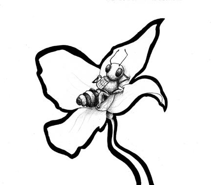 Drinkin-Bee