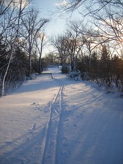 Breaking Trail at Hyland