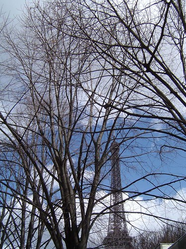 Eiffel Tower by day, through trees
