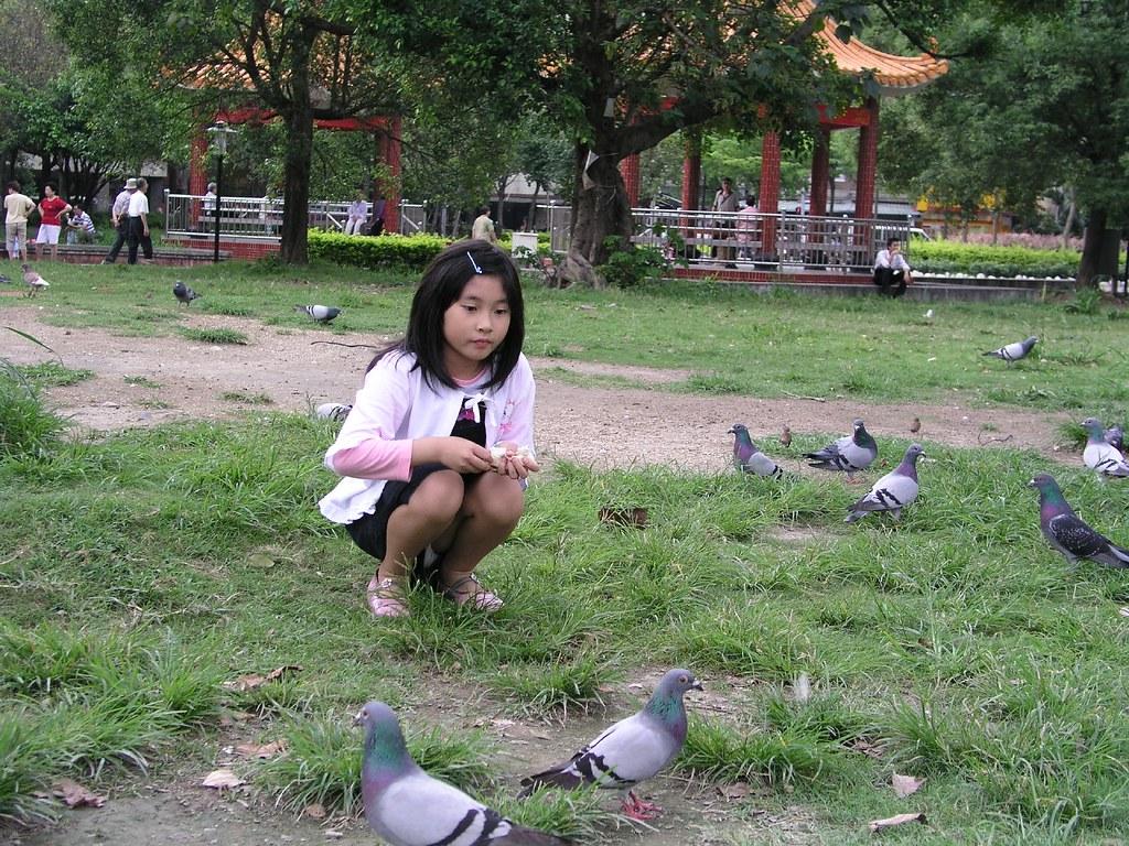 中和四號公園—Annie 正在餵鴿子