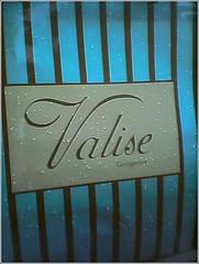 Valise_Bag