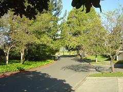 Silverado Resort - Street
