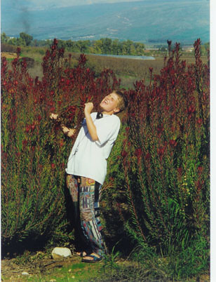 Min tid som rockstjerne i en blomstermark