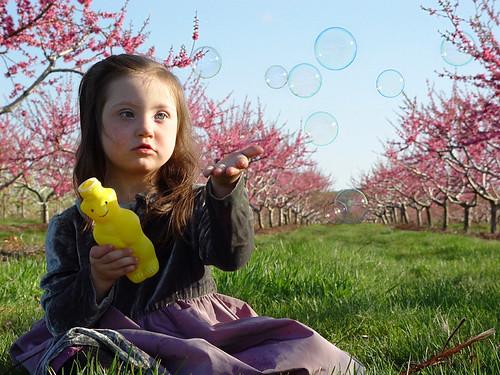 bubblesintheorchard