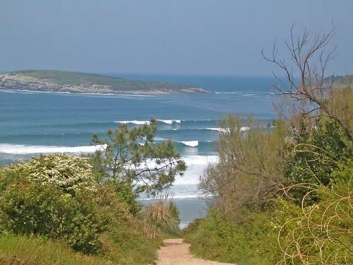 136568817 0443d68c9a Las olas de hoy Viernes, 28 de Abril de 2006  Marketing Digital Surfing Agencia