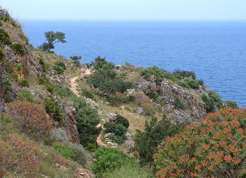 Europe 06 Sicily 015