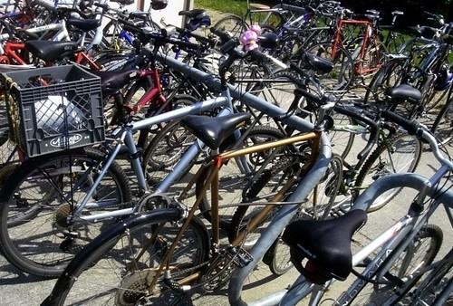 BikeForrest
