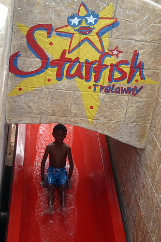 Starfish Water Slide