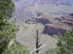 Mather Point Hiking View I