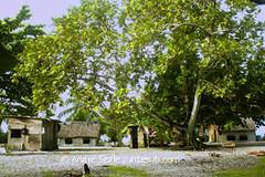 Vilarejo em Namu