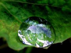droplet2