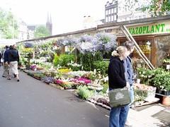 Flower Market, Amsterdam