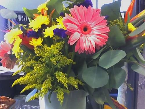 Flowers of the Apocalypse