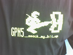 GPN5 - Smack my bit up