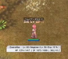 [Ragnarok] Emeraldas Job50