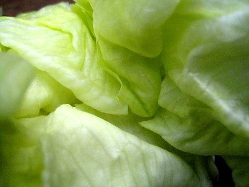 Intimate lettuce 2