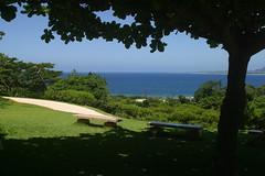 美ら海水族館の入口近く.JPG