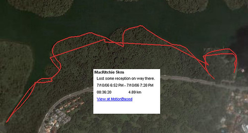 MacRitchie boardwalk run