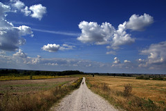 Summer Way photo by Arkadious