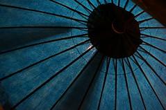 Japanese umbrella photo by Ryo 2013