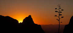 Chisos Basin Sunset photo by dennisbehm