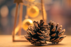 Pine cones photo by Paddyllac