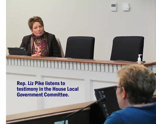 Pike-LocalGovtCommittee-Cropped-011314