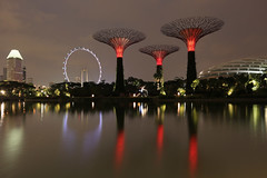 Super trees @ Garden by the Bay photo by David-Shih