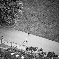 ... is it love? photo by city/human/life (back on Monday)