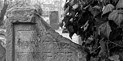 Jewish Cemetery #1 photo by wian1900