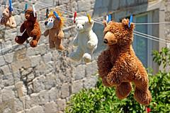 Croatia-01842 - Hanging Bears photo by archer10 (Dennis) REPOSTING