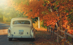 Fall is for lovers & their Rolls Royces photo by wowography.com