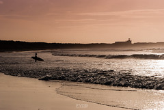 Surfer, Peniche. photo by FVDB Photography