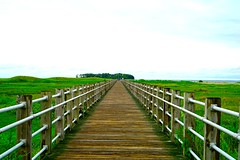 Boardwalk Perspective photo by TangibleDay
