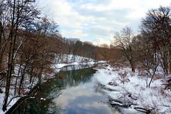The Bronx River photo by Eddie C3