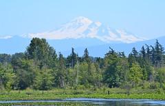 Mt. Baker, Washington ~Explore July 14th, 2014~ photo by careth@2012
