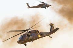 IAF Helicopters Passing photo by NGPhoto.biz