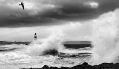 Storm 13-54 Mono [Explored] photo by linlaw39