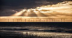 Rays Over the Wind Farm photo by keeweeman